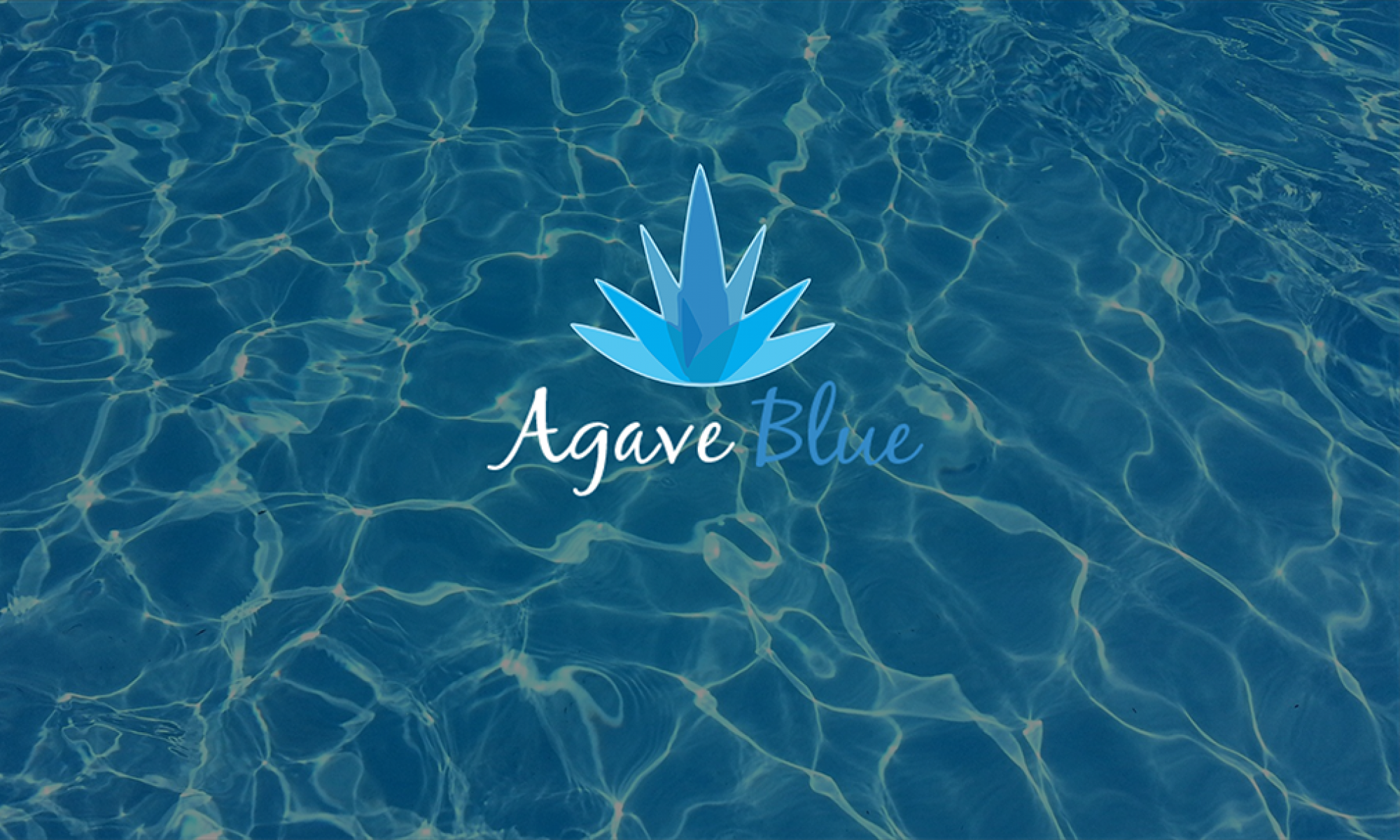 Agave Blue Bacalar